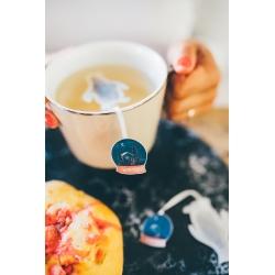 Sachets de thé Pingouins / Pumpkin Chai