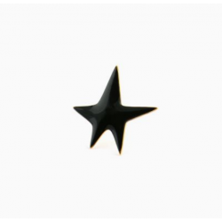 Pin's Black Star