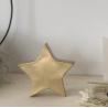 Etoile dorée décorative Large