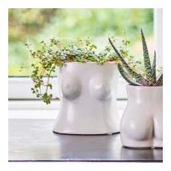Pot céramique Boobs / 2 tailles